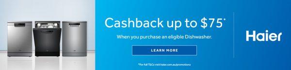 2021 Haier Dishwasher Cashback desktop