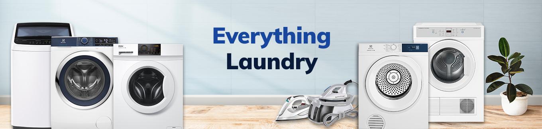 Everything Laundry Desktop