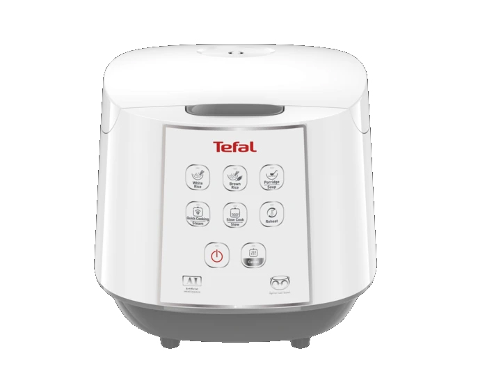 TEFAL RK732 Easy Rice & Slow Cooker Main